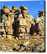 Petrified Forest Rock Formations Acrylic Print