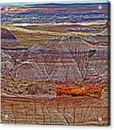 Petrified Log On Overlook Near Blue Mesa In Petrified Forest National Park-arizona   Acrylic Print