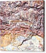 Petrified Rings Acrylic Print