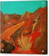 Petroglyph Park Acrylic Print