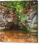 Pewits Nest Acrylic Print