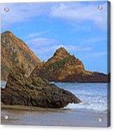 Pfeiffer Beach On Big Sur Coast Acrylic Print by Viktor Savchenko