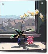 Phalaenopsis Orchid In Sunny Window Acrylic Print