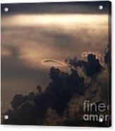 Phenomena Acrylic Print