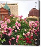 Philly Roses Acrylic Print