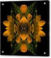 Phlower Phantasy Acrylic Print