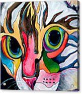 Phoebe Blu Acrylic Print by Patti Schermerhorn