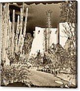 Phoenix Botanical Garden Path Acrylic Print