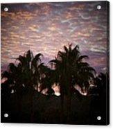 Phoenix Sunset Acrylic Print