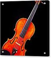 Photograph Of A Complete Viola Violin In Color 3368.02 Acrylic Print