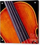 Photograph Of A Upper Body Viola Violin In Color 3369.02 Acrylic Print