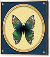 Phthalo Butterfly Acrylic Print