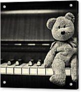 Piano Bear Acrylic Print by Tim Gainey