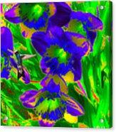 Pic Me Pic Me Acrylic Print