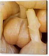 Pickled White Garlic - 1 Acrylic Print