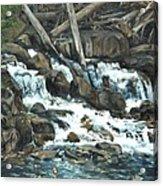 Picnic At The Falls Acrylic Print