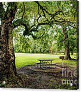 Picnic At The Park Acrylic Print