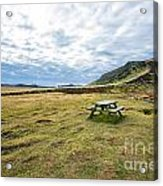 Picnic On Another Planet Acrylic Print
