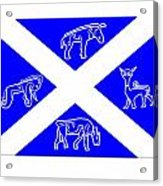 Pictish Scotland Flag Acrylic Print