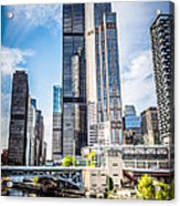 Picture Of Chicago Buildings With Willis-sears Tower Acrylic Print