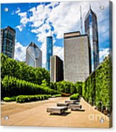 Picture Of Chicago Skyline With Millennium Park Trees Acrylic Print