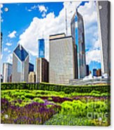 Picture Of Lurie Garden Flowers With Chicago Skyline Acrylic Print