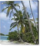 Picture Perfect Paradise Acrylic Print
