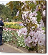 Pictures In The Garden Acrylic Print