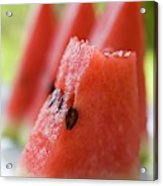 Pieces Of Watermelon Acrylic Print