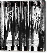Pier Pilings Black And White Acrylic Print