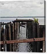Pier To Nowhere Acrylic Print