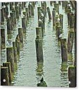 Piers And Birds Acrylic Print
