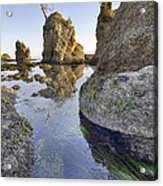 Pig And Sows Rock In Garibaldi Oregon At Low Tide Vertical Acrylic Print