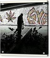 Pigeon Man Acrylic Print