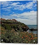 Pigeon Point Lighthouse Painted Acrylic Print