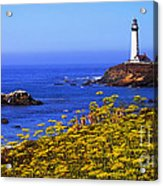 Pigeon Point Lighthouse Panoramic Acrylic Print