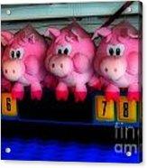Piggy Race Acrylic Print