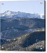 Pike National Forest In Snow Acrylic Print