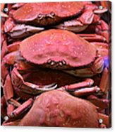 Pile Of Fresh San Francisco Dungeness Crabs - 5d20693 Acrylic Print by Wingsdomain Art and Photography