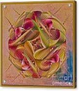 Pin Stripe City Acrylic Print by Deborah Benoit