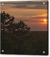 Pine Barrens Sunset Nj Acrylic Print