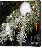 Pine Branch With Ice And Stars Acrylic Print