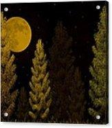 Pine Forest Moon Acrylic Print