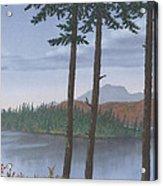 Pine Island Acrylic Print