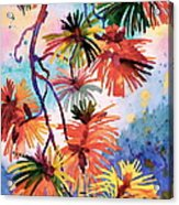 Pine Needle Fireworks Acrylic Print