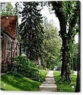 Pine Road Acrylic Print