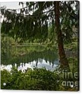Pine Trees Over Starvation Lake Acrylic Print