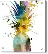 Pineapple 2 Acrylic Print