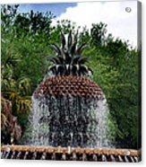 Pineapple Fountain Acrylic Print by Skip Willits