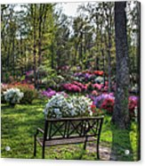 Pinecrest Gardens Acrylic Print